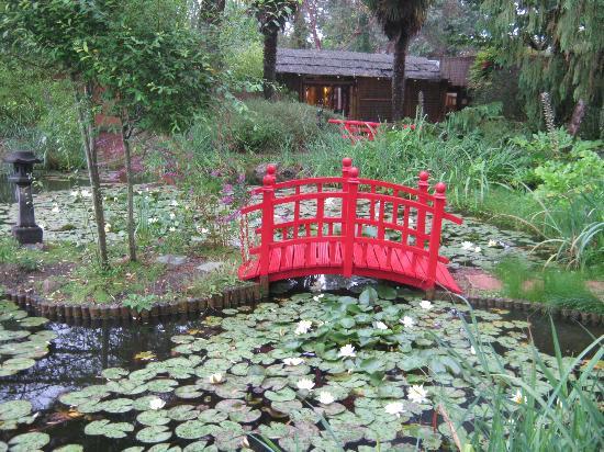 Parc Floral et Tropical de la Court d'Aron: Le parc