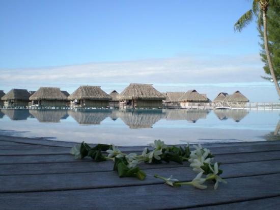 Sofitel Moorea Ia Ora Beach Resort: panorama hotel piscina e a seguito spiaggia