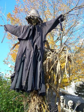 Halloween 2012(sur Main street), situé à distance de marche du Winterport Winery