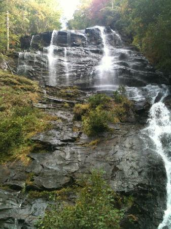 Amicalola Falls State Park: The view from the base of the falls...after 175 stairs