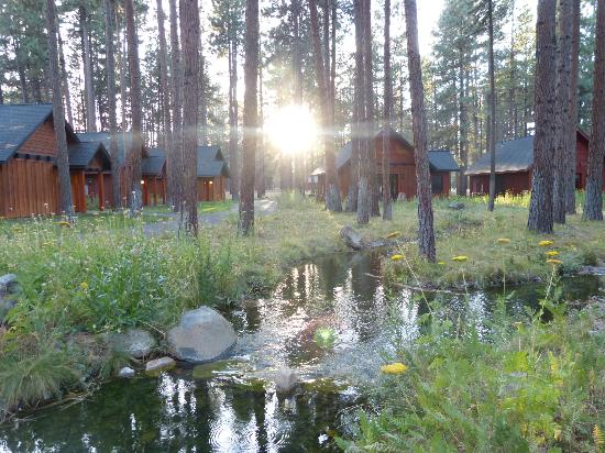 Five Pine Lodge & Spa: Fabulous place