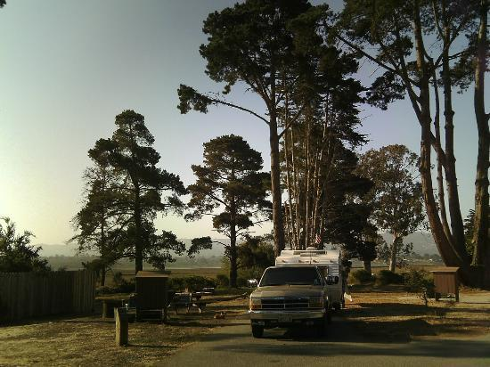 Morro bay state park campground pictures — 2