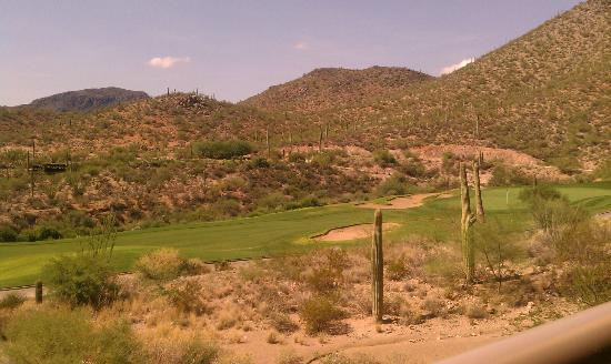 JW Marriott Tucson Starr Pass Resort & Spa: Golf Course