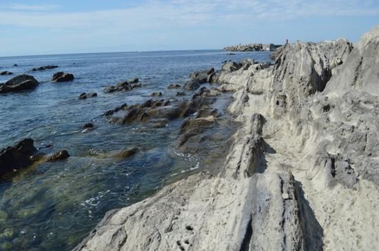 Jogashima Island : 折り重なった地層が見える海岸