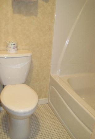 Meadowmere Resort: Toilet & Tub/Shower