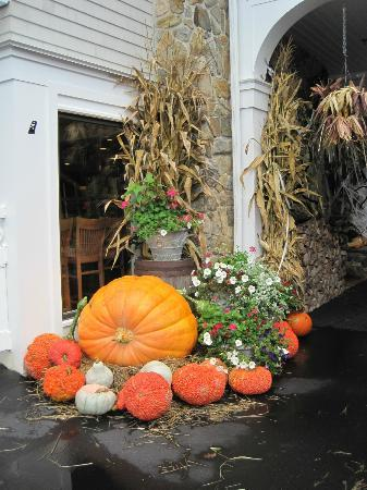 Meadowmere Resort: Pumpkins