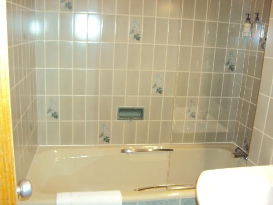 Gatwick Cambridge Hotel: Bathroom - great shower!