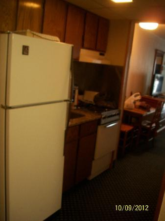 Dayton House Resort: Kitchnette. Dated but functioning appliances.
