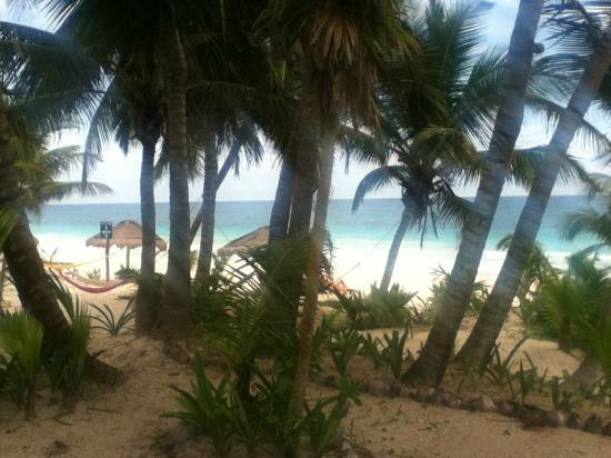 Mestizo Hotel Boutique: view from beach cabana #19