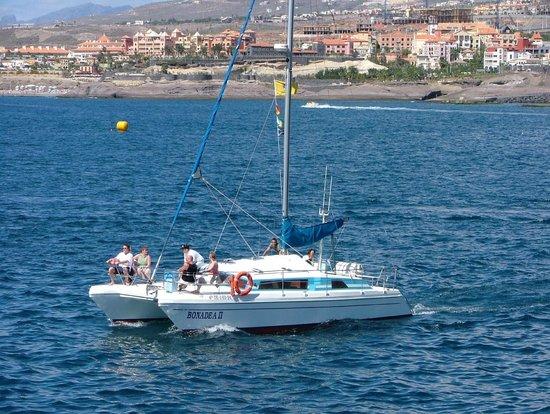Catamaran Bonadea II