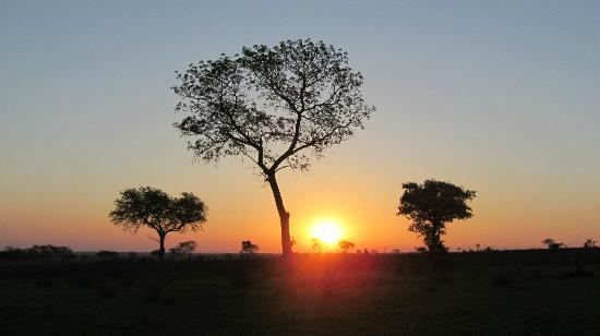 Tydon Safari Camp: sundowner drinks