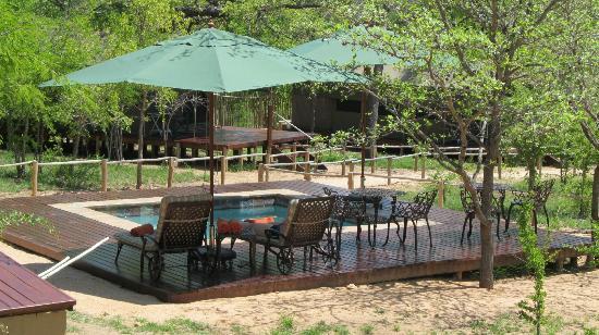 Tydon Safari Camp: pool area