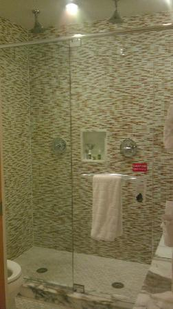Santa Maria Suites Hotel: bathroom in master