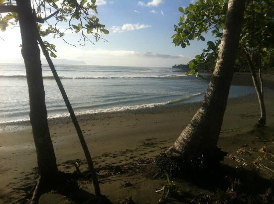 Blue Osa Yoga Retreat and Spa: View of the beach..just a yards from your room!