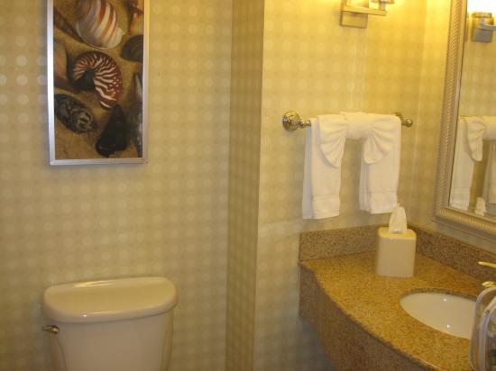 Hilton Garden Inn San Diego Del Mar : Bathroom