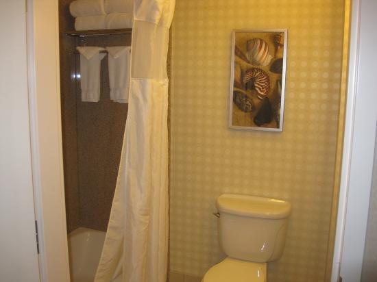 Hilton Garden Inn San Diego Del Mar: Bath Tub