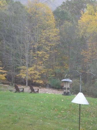 Toll Road Inn: out our back window