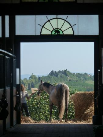 Il Paretaio: View from the Barn