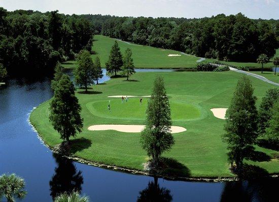 Disney S Palm Golf Course Orlando Fl Address Phone