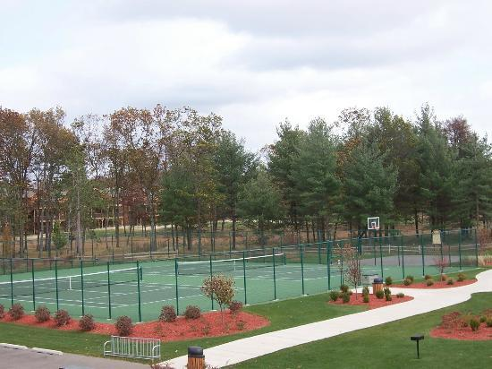 Northern Bay Resort: Tennis Courts