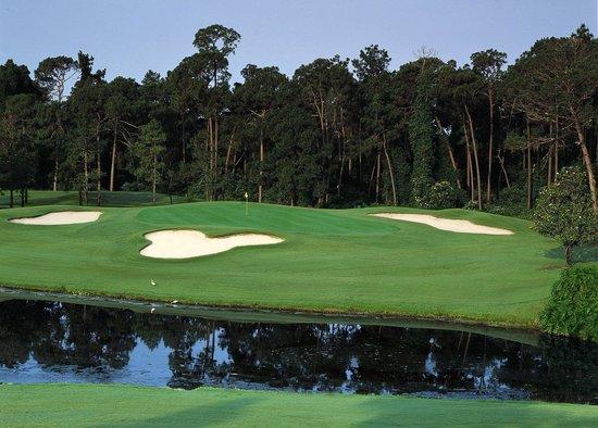 Disney's Magnolia Golf Course: Designed by Joe Lee, the Magnolia course has plenty of pitfalls.
