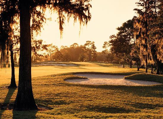 Disney's Magnolia Golf Course: The course design masterfully uses the area's natural features.