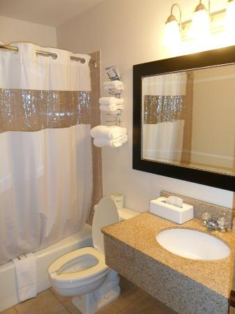 Baymont Inn & Suites Dubuque : Bathroom