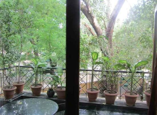 Saubhag Bed and Breakfast: View from front room 1st floor