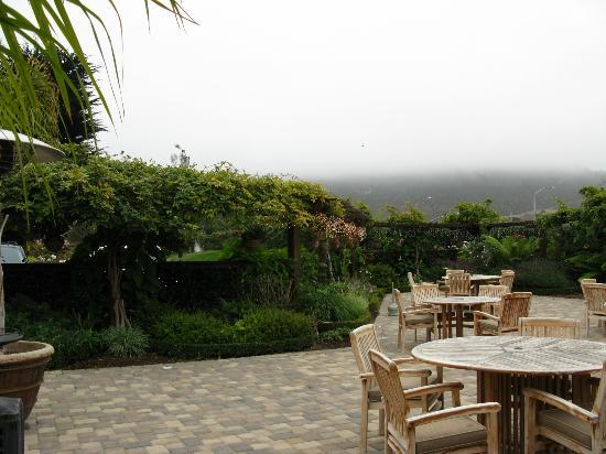 Carmel Mission Inn & Fuse Lounge Cafe: fog
