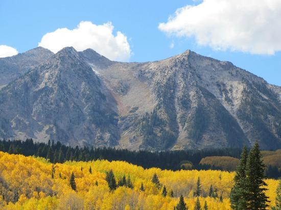 Gunnison National Forest: Kebler Pass