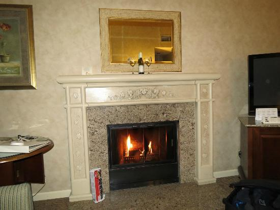 Vintners Inn: Our room with a real wood fireplace