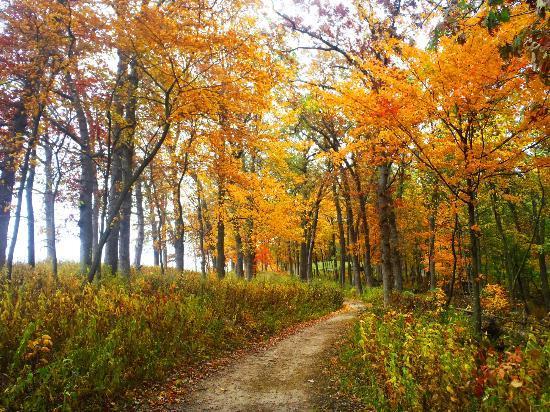 Wyalusing State Park: Fall 2012