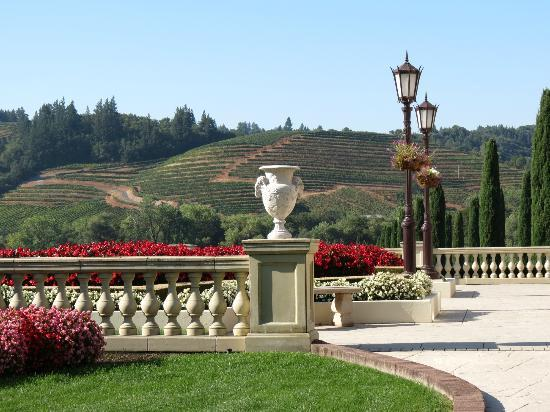 Ferrari-Carano Winery: the view