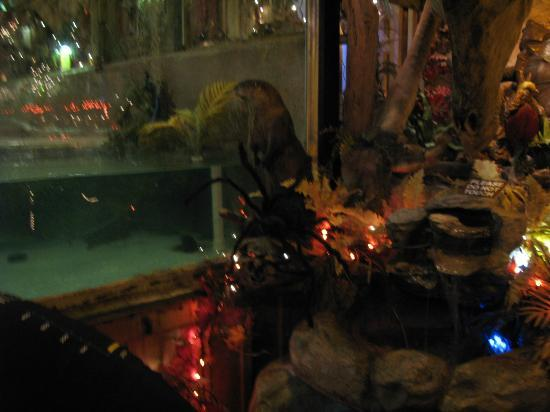 Halloween decor picture of clark 39 s fish camp for Clark s fish camp seafood restaurant