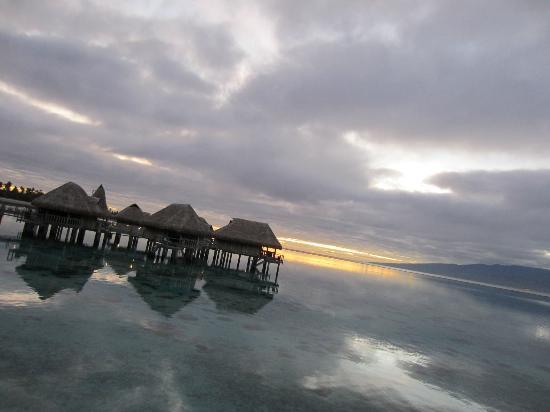 Sofitel Moorea Ia Ora Beach Resort: View from my balcony