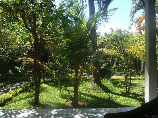 Rini Hotel: Beautiful garden