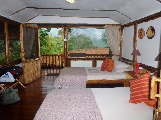 Buhoma Lodge: room in the middle of the forest