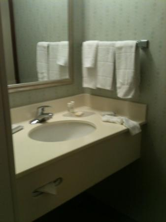 SpringHill Suites Washington: sink