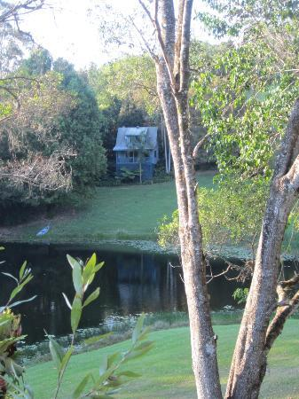 Montville Country Cabins: The view from our cottage over the pretty lake