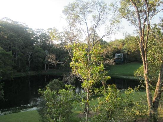 Montville Country Cabins : The view from our cottage over the pretty lake