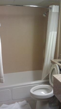 Quality Inn Central: salle de bain 