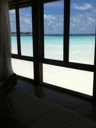Cocoa Island by COMO: View from my bed !