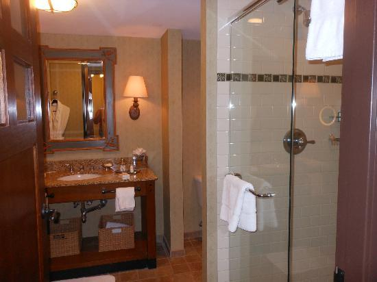 The Lodge and Spa at Callaway Gardens: Bathroom sink & shower area