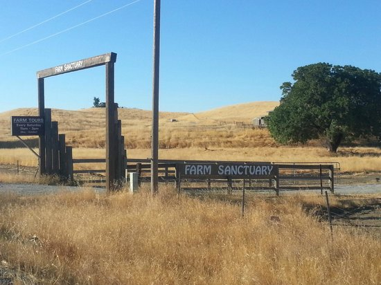 Orland, CA: Farm Sanctuary Entrance