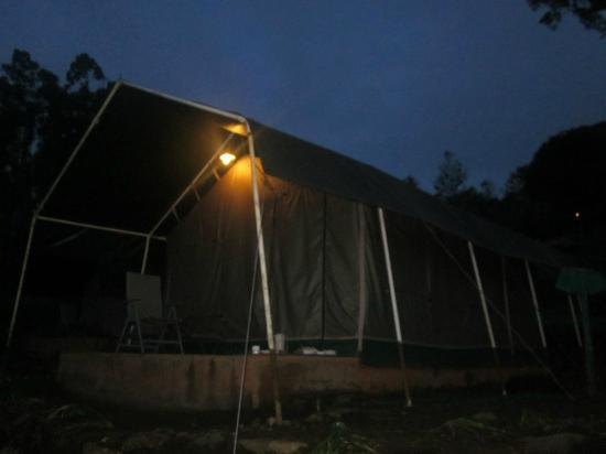 Nature Zone Resort: tent