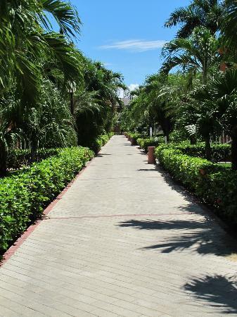 Walkway to the Lobby