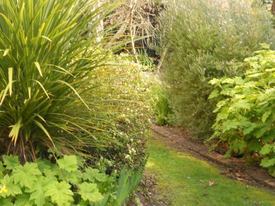 Donalea Bed & Breakfast: Enchanted Garden
