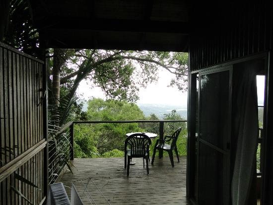 Treetops Seaview : View from the front steps down to the verandah and beyond..