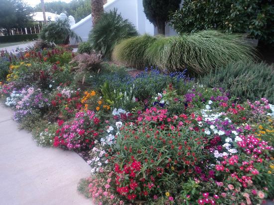 St. George Temple: I bellissimi giardini intorno al Tempio