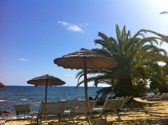 Hotel Costa dei Fiori: Sunny October by the Infinity Pool!